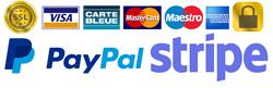 pagamenti sicuri con Pay Pal e Stripe